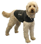 Thundershirts can give comfort to fearful dogs in many different situations - not just storms!